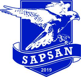 Logo ZBROIA`s Sapsan — ZBROIA Company LLC